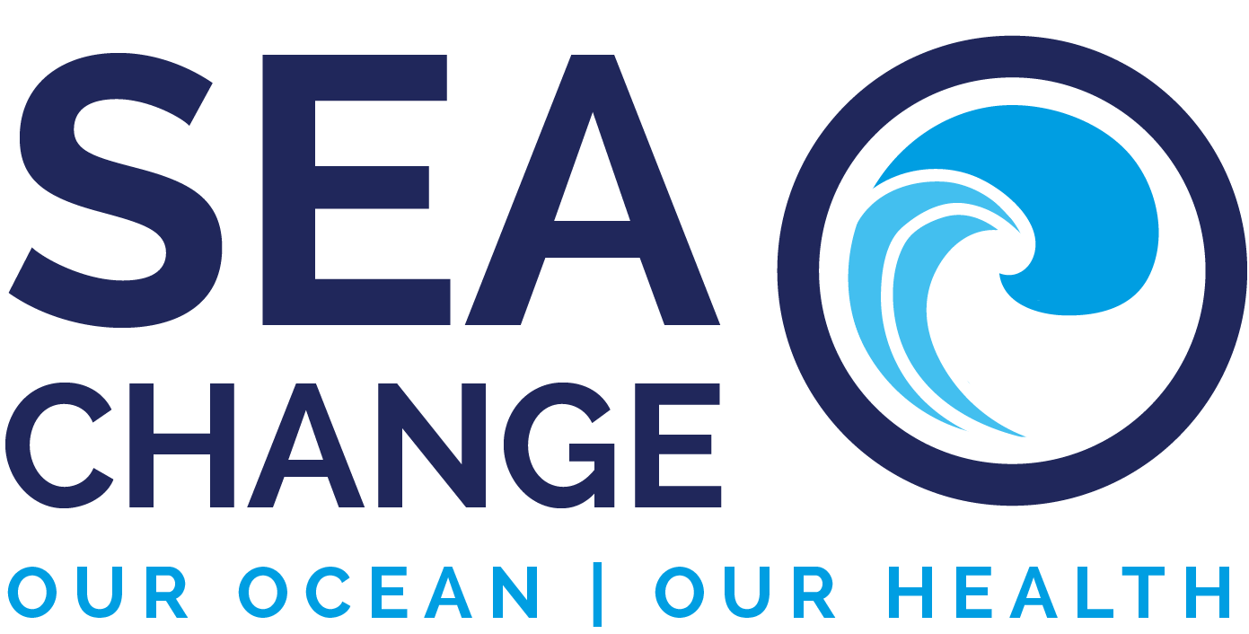 SEACHANGE Full Logo Colour