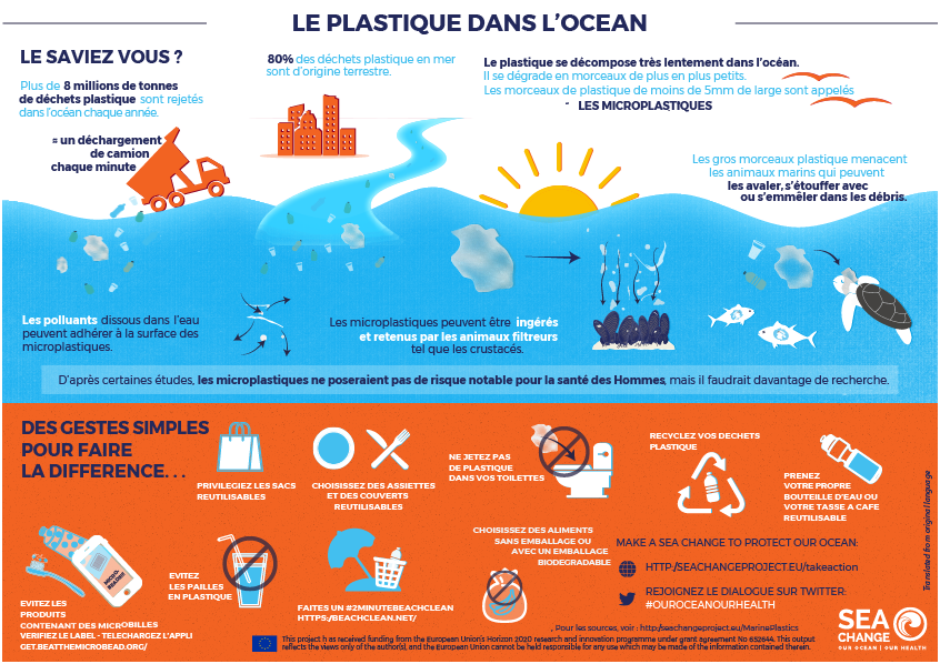 Infographic PlasticPollution FRENCH